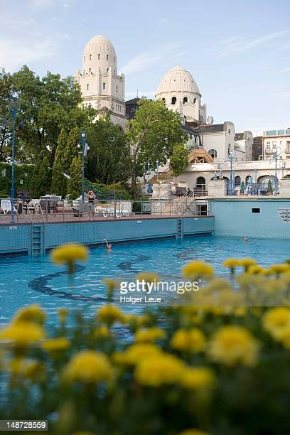 Outdoor swimming pool at Gellert Baths.