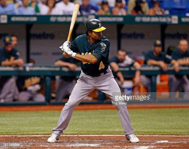 Outfielder Coco Crisp of the Oakland Athletics bats against the Tampa Bay Rays during the game at Tropicana Field on August 24 2012 in St Petersburg...