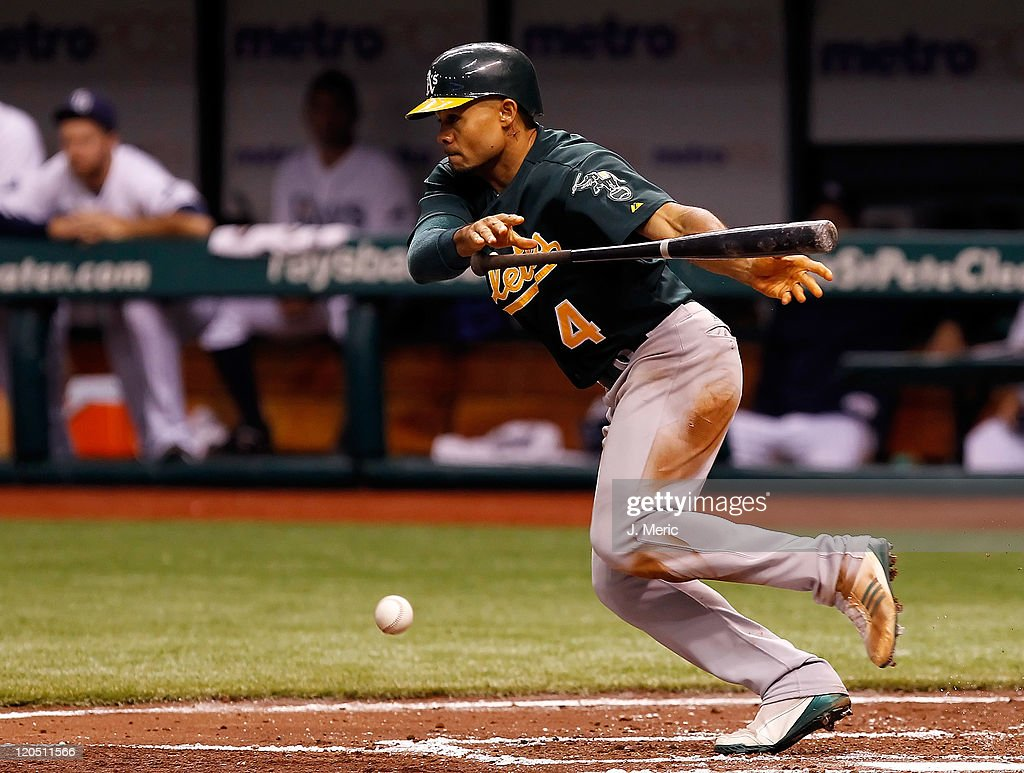 Outfielder <a gi-track='captionPersonalityLinkClicked' href=/galleries/search?phrase=Coco+Crisp&family=editorial&specificpeople=206376 ng-click='$event.stopPropagation()'>Coco Crisp</a> #4 of the Oakland Athletics bunts his way on base against the Tampa Bay Rays during the game at Tropicana Field on August 6, 2011 in St. Petersburg, Florida.