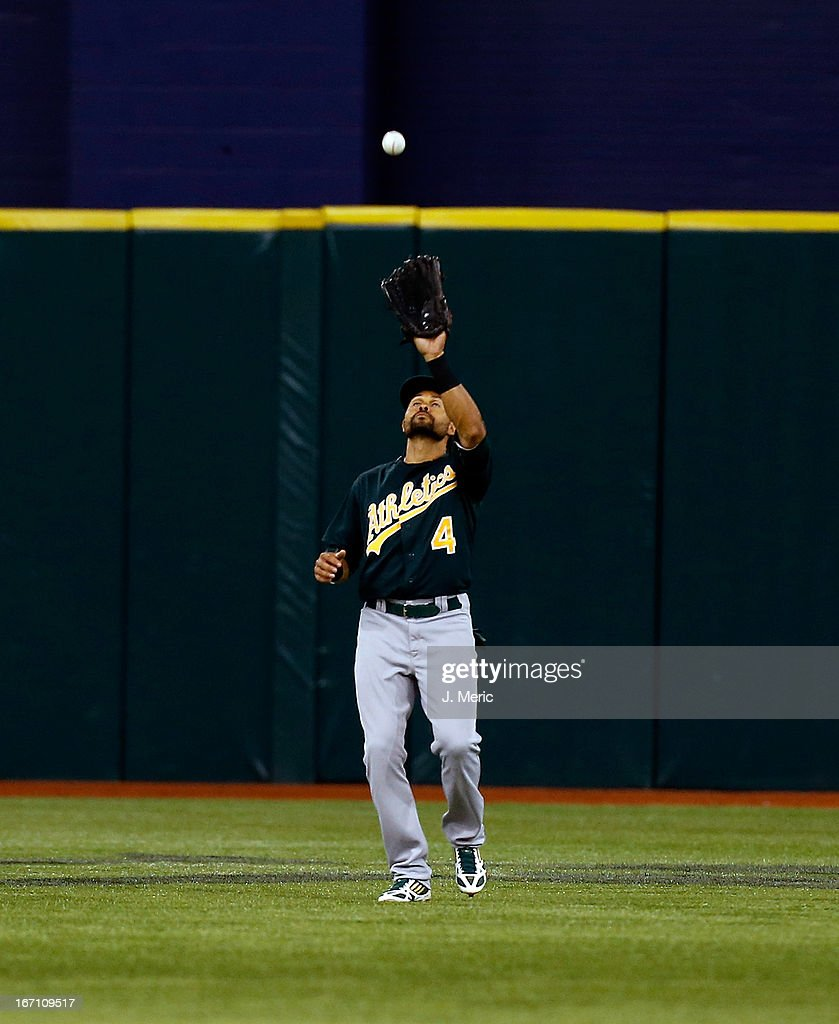 Outfielder <a gi-track='captionPersonalityLinkClicked' href=/galleries/search?phrase=Coco+Crisp&family=editorial&specificpeople=206376 ng-click='$event.stopPropagation()'>Coco Crisp</a> #4 of the Oakland Athletics catches a fly ball against the Tampa Bay Rays during the game at Tropicana Field on April 20, 2013 in St. Petersburg, Florida.