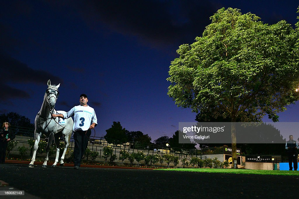 Outlandish Lad is led around the mounting yard before the Essendon Mazda Australia Stakes during Melbourne racing at Moonee Valley Racecourse on January 25, 2013 in Melbourne, Australia.