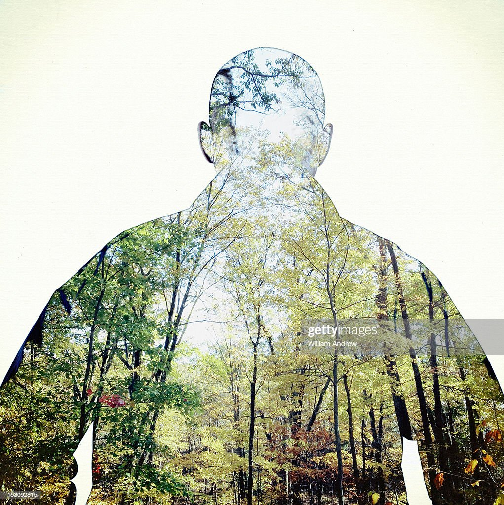 Outline of person with forest within : Stock Photo