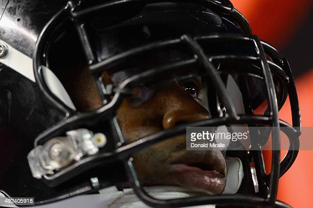 Outside linebacker James Harrison of the Pittsburgh Steelers looks on during a game against the San Diego Chargers at Qualcomm Stadium on October 12...