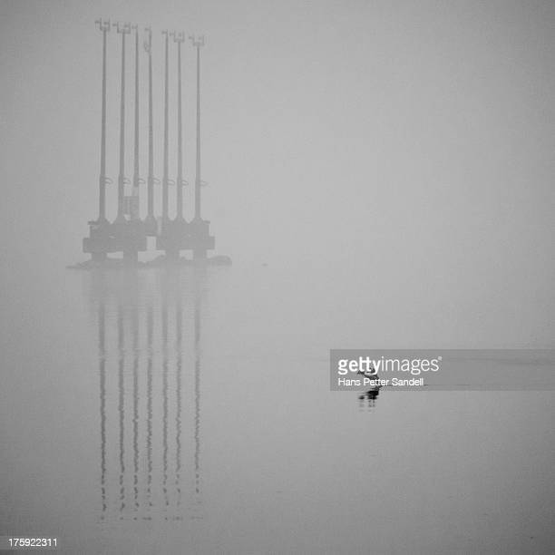 CONTENT] Outside the airport Kjevik in my hometown Kristiansand I spotted this bird taking of in the fog