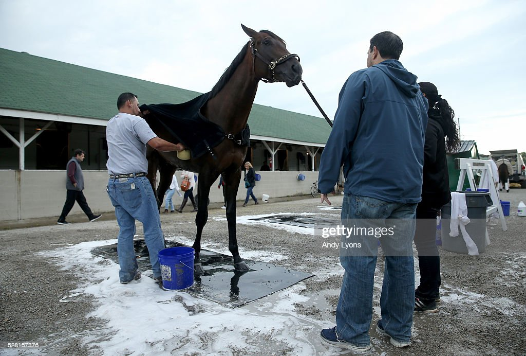 Outwork is washed in the barn area during the morning training for the 2016 Kentucky Derby at Churchill Downs on May 04, 2016 in Louisville, Kentucky.