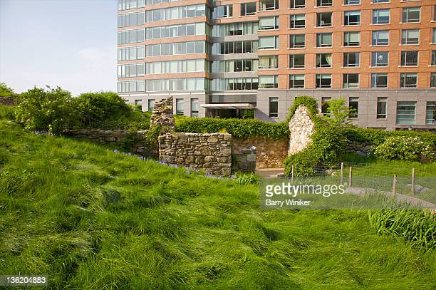 Overgrown glass slope near apartment tower.