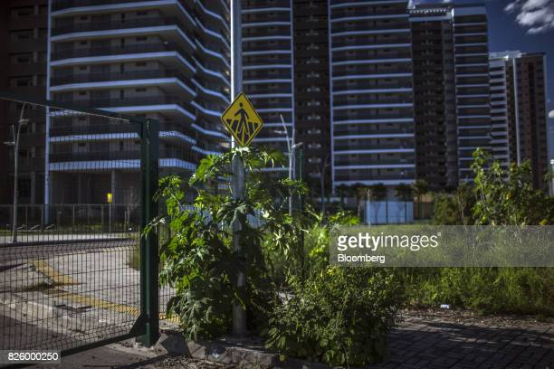 Overgrown grass stands in front of the Ilha Pura property604 empty luxury apartments used by more than 18000 athletes during the Olympic games in the...