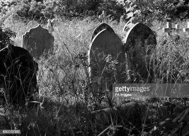 Overgrown Graves in Highgate Cemetary London where in recent years nude rituals and witchcraft ceremonies have taken place and corpses removed At the...