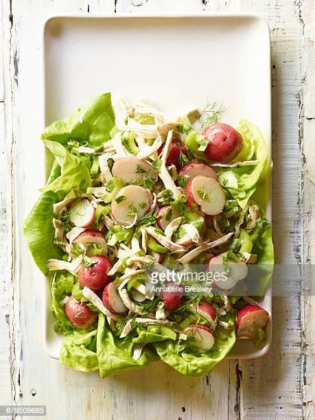 Overhead chicken potato salad
