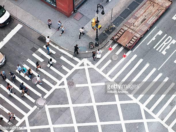 Overhead of crosswalk in New York City