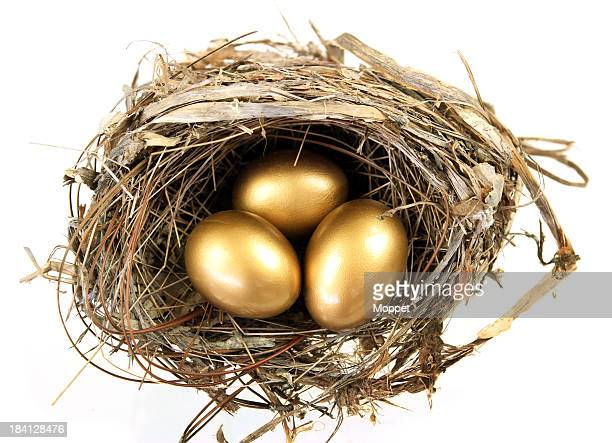 Overhead view of a nest with three golden eggs