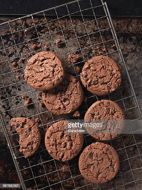 Overhead view of double chocolate chip crunchy cookies on cooling rack