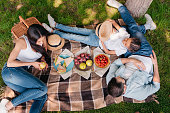 overhead view of family spending time together on picnic