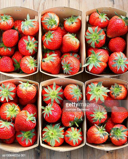 Overhead view of freshly picked strawberries in punnets