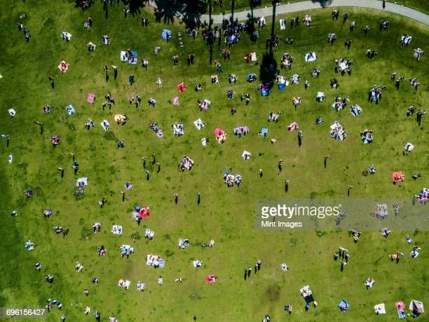 Overhead view of people in a city park on a summer day, sitting, standing, on picnic rugs.