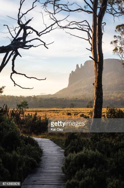 Overland Track at Sunset