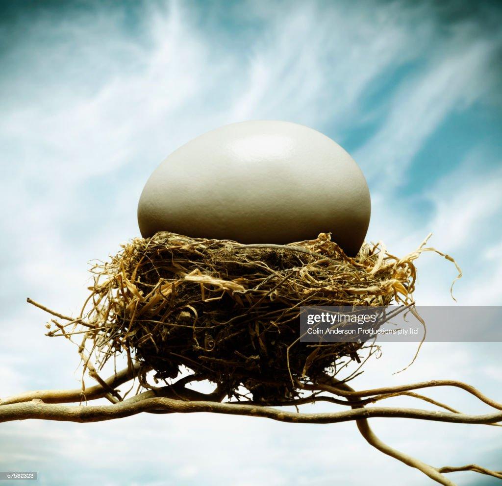 Oversized egg in tiny nest