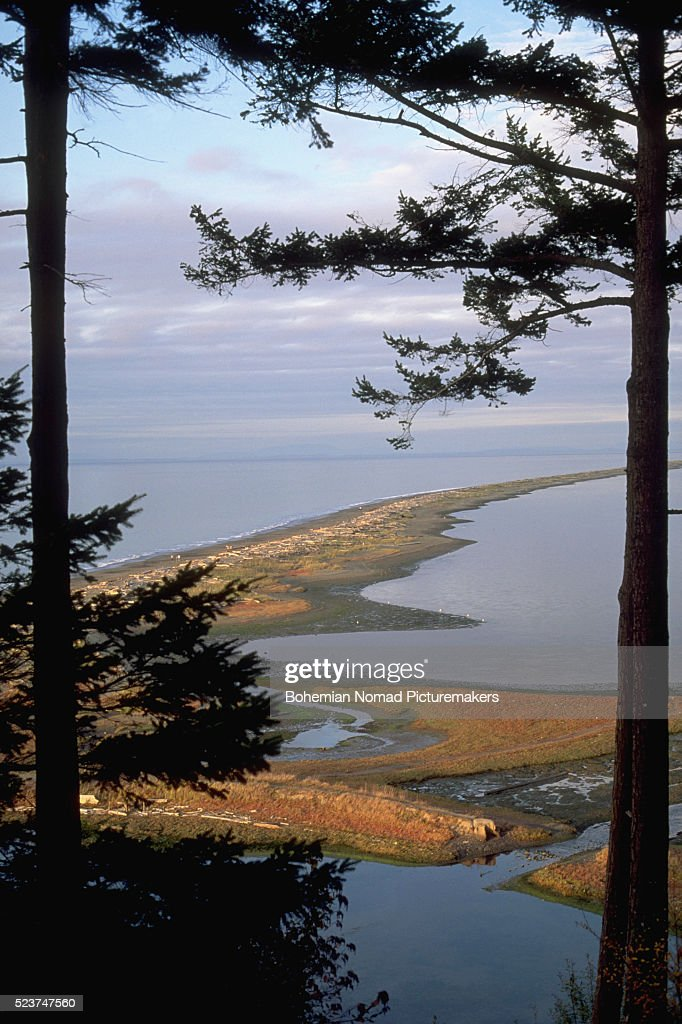 Overview of Dungeness Spit