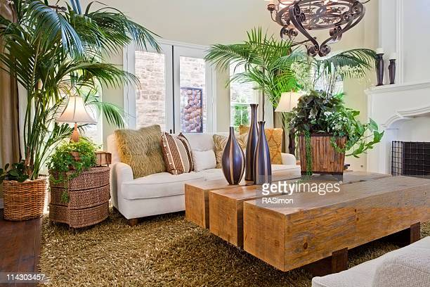 Overview of natural nature themed living room
