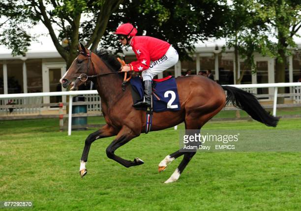 Owned by Sir Alex Ferguson and ridden by Michael Hills Balty Boys goes to post for the Weatherbys EBF Mawatheeq Maiden Stakes