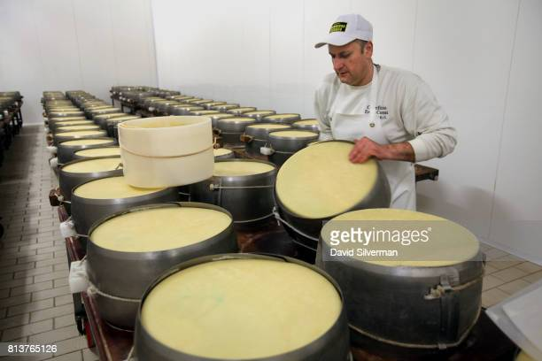 Owner and head cheesemaker Claudio flips wheels of twodayold ParmigianoReggiano cheese encased in perforated steel molds which squeeze excess water...