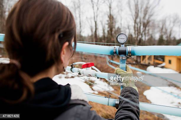 Owner April Lemay checks the pressure in a vacuum line that carries maple sap at April's Maple in Canaan Vermont US on on Thursday April 23 2015...