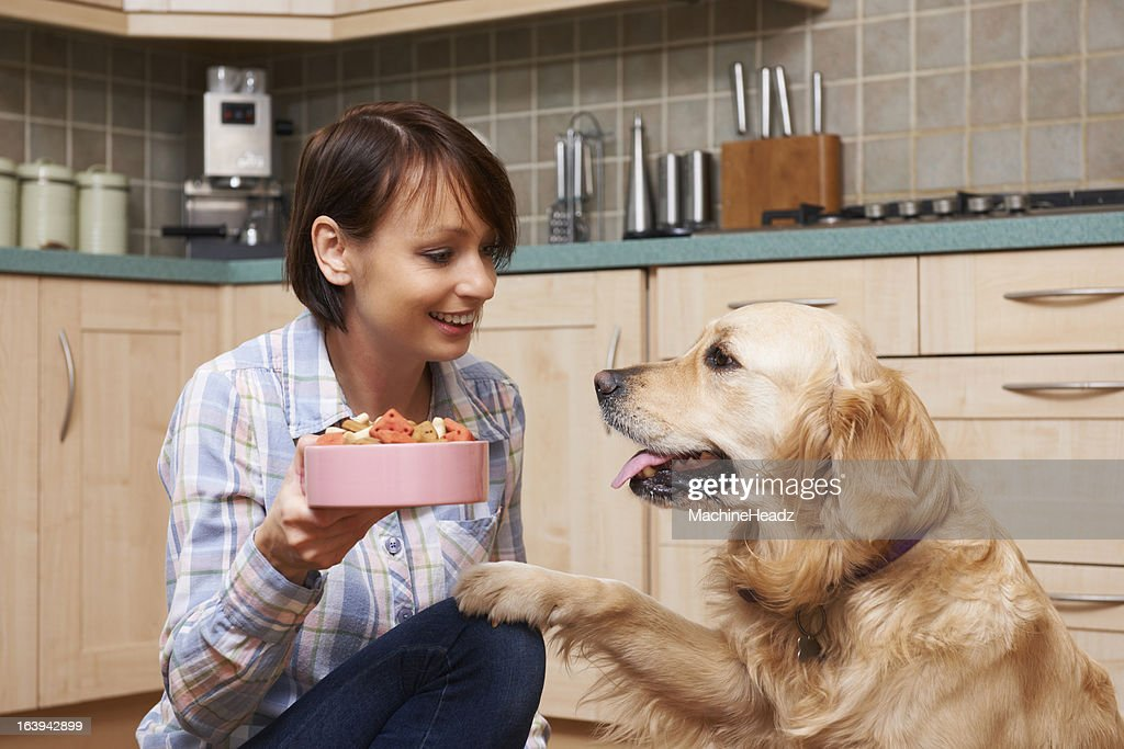 Owner Giving Golden Retriever Meal Of Dog Biscuits In Bowl