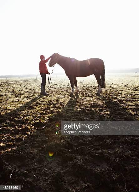Owner grooming horse