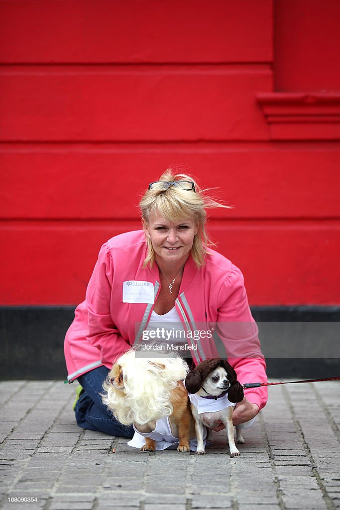 Owner Jayne Barley with Betty, a Teacup Chihuahua is dressed up as the character Princess Leia from the film Star Wars (right) and Harvey, a long-haired Chihuahua dressed as Marilyn Monroe (left) on May 5, 2013 in London, England. Enthusiasts gathered at the Picture House in Stratford to parade their dogs dressed up as famous Sci-Fi characters as part a London-wide event called Sci-Fi London.