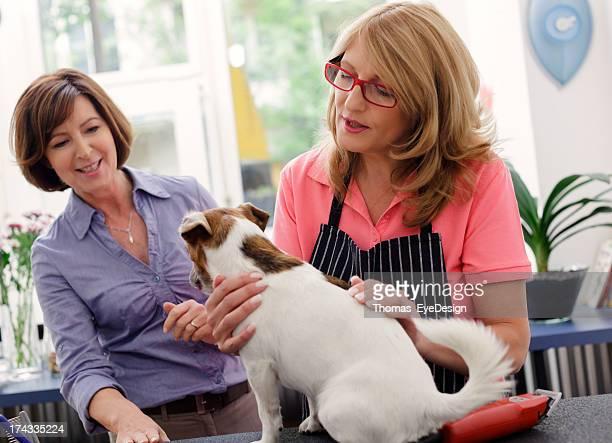 Inhaber von Pet Grooming Salon