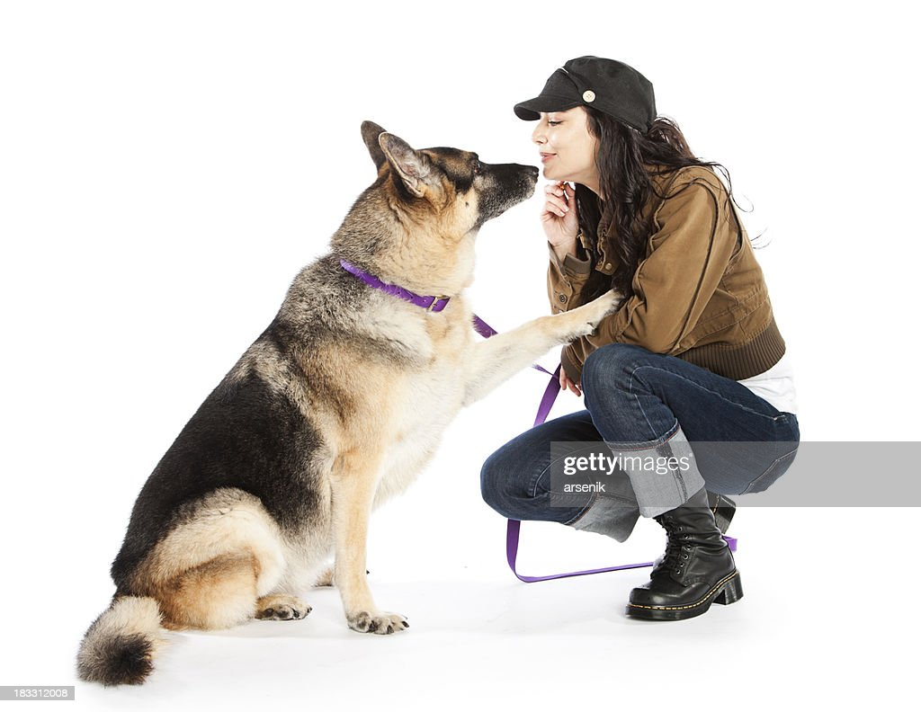 Owner with a German Shepherd : Stock Photo