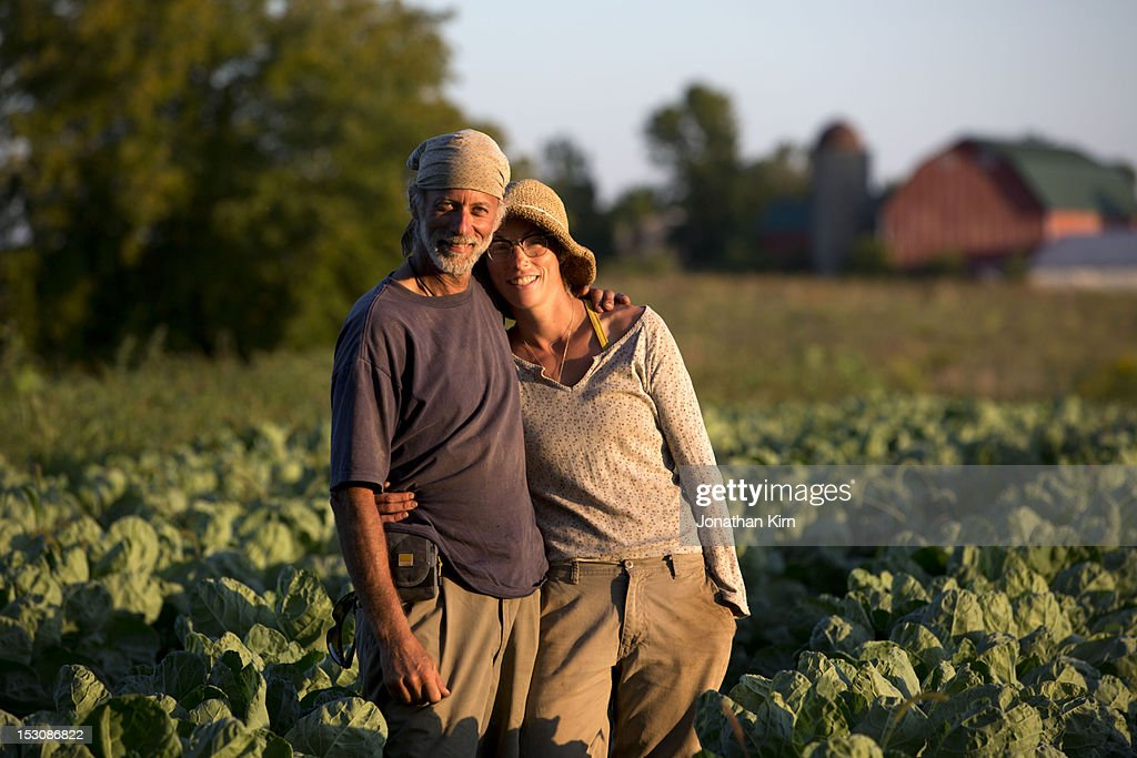 Owners of a farm stand in a crop of broccoli. : Stock Photo