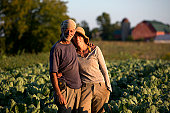 Owners of a farm stand in a crop of broccoli.