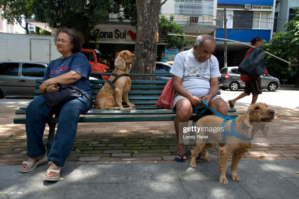 Owners on bench with dogs on Praca Sao Salvador. : Stock Photo