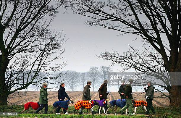 Owners wait with their dogs prior to a course during the Swaffham Coursing Club Meeting on February 8 2005 in Swaffham England The Countryside...