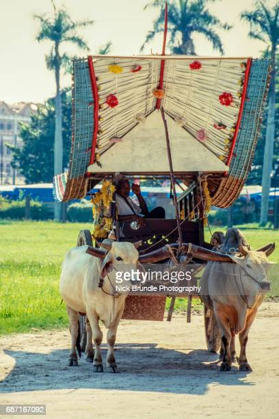 Oxcart in Malaysia