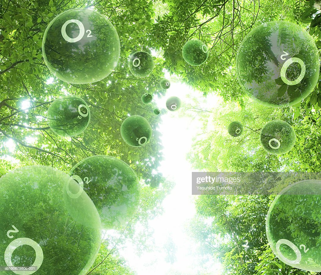 Oxygen molecules floating through trees (digital composite) : Photo