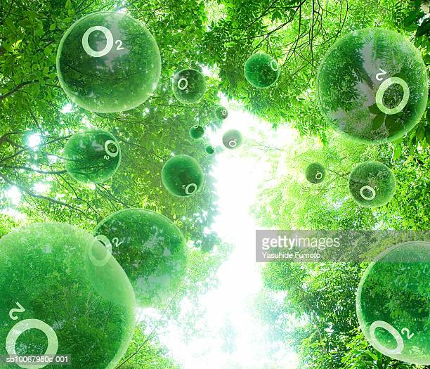 Oxygen molecules floating through trees (digital composite)