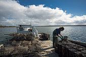 Oyster Farming, Frecyinet, Coles Bay Tasmanaia
