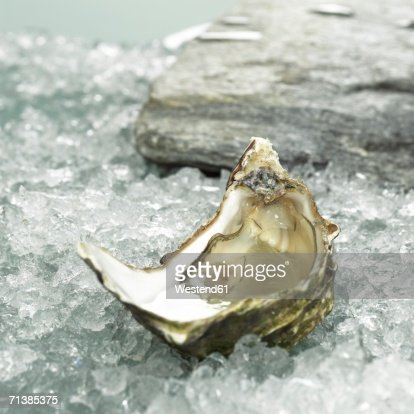 Oyster on crushed ice, close-up