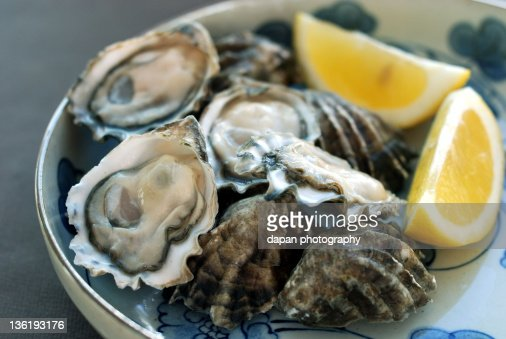 Oyster : Stock Photo