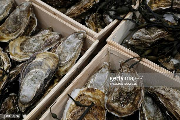 Oysters are pictured in the fresh fish section of an hypermarket store of French retail giant Carrefour in Villeneuvelagarenne near Paris on December...