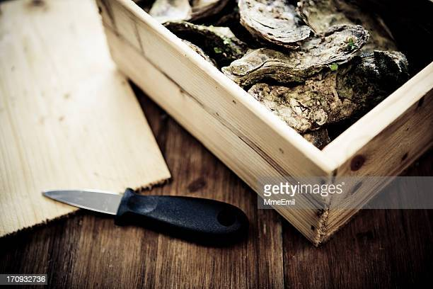 Oysters Box