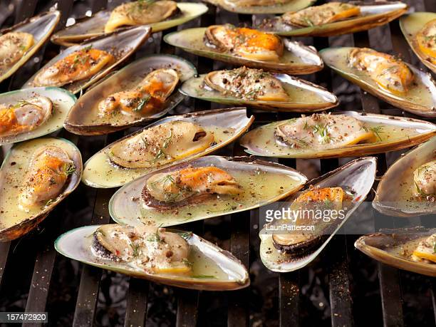 Austern auf dem Grill