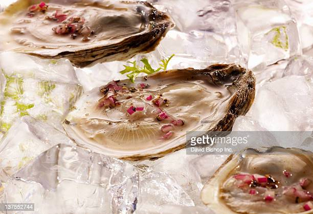 Oysters with Champagne Mignonette Sauce