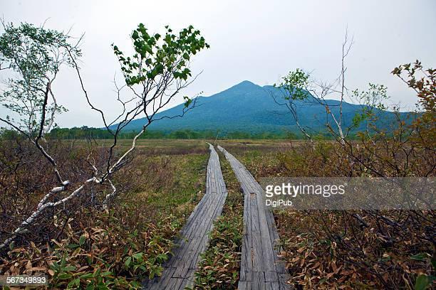 Ozegahara Marshland