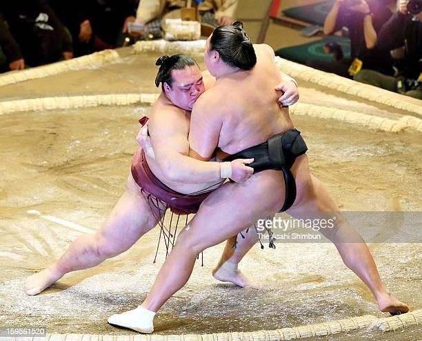 Ozeki Kisenosato pushes Kyokutenho to win in day two of the Grand Sumo New Year Tournament at Ryogoku Kokugikan on January 14 2013 in Tokyo Japan
