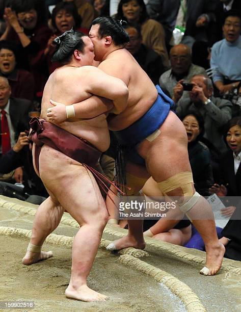 Ozeki Kisenosato pushes out Ozeki Kotoshogiku to win during day ten of the Grand Sumo New Year Tournament at Ryogoku Kokugikan on Janaury 22 2013 in...
