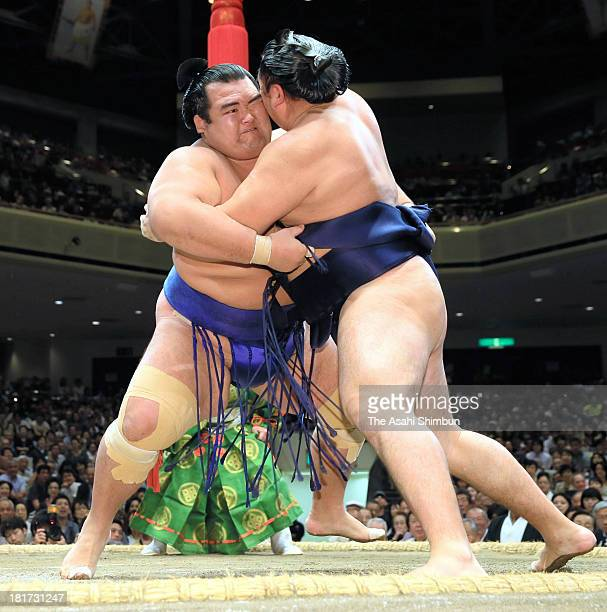 Ozeki Kotoshogiku pushes Mongolian ozeki Kakuryu whose real name is Mangaljalavyn Anand out of the ring during day nine of the Grand Sumo Autumn...