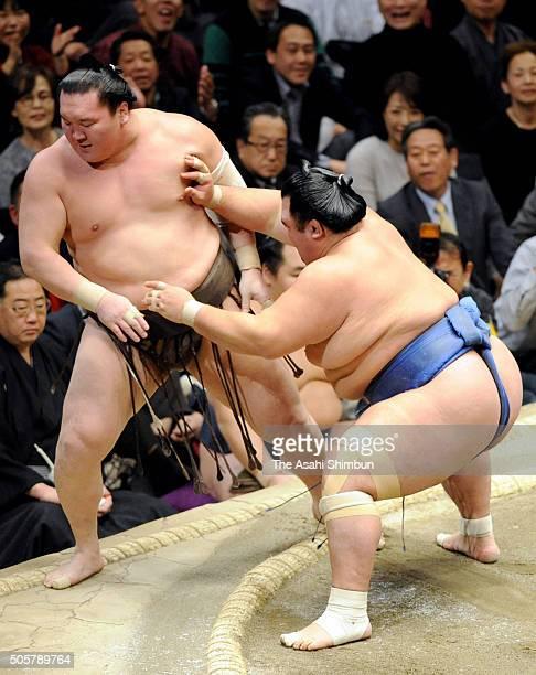 Ozeki Kotoshogiku pushes Mongolian yokozuna Hakuho out of the ring to win during day eleven of the Grand Sumo New Year Tournament at Ryogoku...